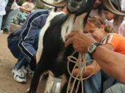 dia-de-canarias-2007-14