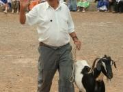 dia-de-canarias-2007-16