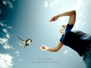 liberar-tortugas-y-pardelas-047