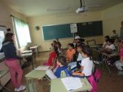 cole-del-valle-555_1024x768